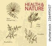 handdrawn illustration   health ... | Shutterstock .eps vector #236495437
