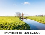 Dutch Polder Landscape In The...