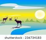 deers on the snow field | Shutterstock . vector #236734183