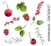 set of watercolor berries ...   Shutterstock .eps vector #236765617