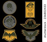 special unit military emblem... | Shutterstock .eps vector #236802433