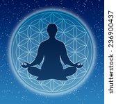 in meditation | Shutterstock . vector #236900437