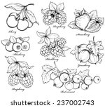 collection of hand drawn... | Shutterstock .eps vector #237002743
