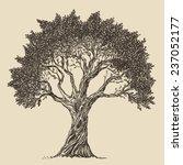 Vintage Olive Engraved...
