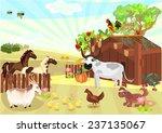 farm animals | Shutterstock .eps vector #237135067