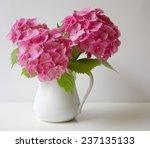 Постер, плакат: Bouquet of pink hydrangea
