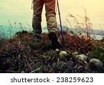 Woman Hiker Hiking On Seaside...