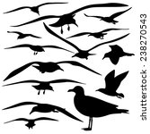 set of sea gull silhouette ... | Shutterstock .eps vector #238270543