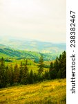 summer in the mountains.... | Shutterstock . vector #238382467