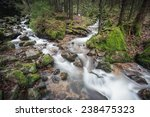 Small Stream In Black Forest ...