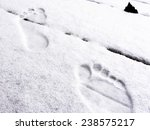Traces Of Bare Human Feet In...