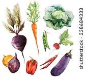 vegetables  food watercolor | Shutterstock .eps vector #238684333