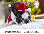 French Bulldog In Santa Costum...