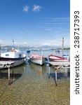 small  brightly coloured ...   Shutterstock . vector #238717393