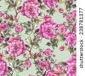 roses seamless pattern.   Shutterstock . vector #238781377