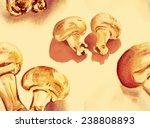 watercolour champignons... | Shutterstock . vector #238808893