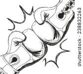 boxing label design  vector...   Shutterstock .eps vector #238832263