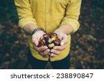 man holding handful of fresh... | Shutterstock . vector #238890847