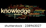 conceptual image of tag cloud... | Shutterstock .eps vector #238963027