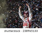 Постер, плакат: Dale Earnhardt Jr 88