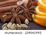 cinnamon sticks  cloves  anise... | Shutterstock . vector #239041993