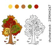 Coloring Book  Autumn Tree