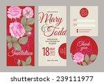 vector graphics. set of wedding ... | Shutterstock .eps vector #239111977
