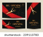 set of big opening invitation... | Shutterstock .eps vector #239113783