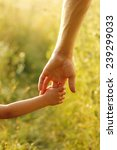 a parent holds the hand of a... | Shutterstock . vector #239299033