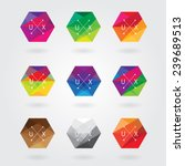 trendy abstract hexagon icon elements set in colorful polygon style with triangular geometric pattern- business hipster style logotype | Shutterstock vector #239689513