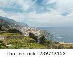 mountainous coast. madeira... | Shutterstock . vector #239716153