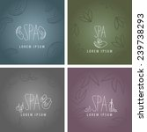 spa icons and backgrounds set   ... | Shutterstock .eps vector #239738293