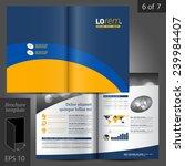 vector brochure template design ... | Shutterstock .eps vector #239984407