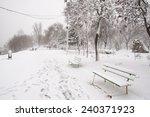 Snow Storm  Snow Storm On The...