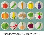 vegetable flat icon set. the... | Shutterstock .eps vector #240756913