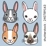 A Vector Set Of 4 Rabbit's...