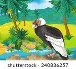 cartoon scene   wild  south... | Shutterstock . vector #240836257