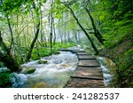 wooden path and waterfall in... | Shutterstock . vector #241282537