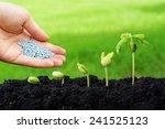 hand giving chemical fertilizer ... | Shutterstock . vector #241525123