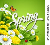 fresh spring background with... | Shutterstock .eps vector #241543003