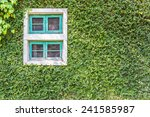 White Window Covered With Gree...