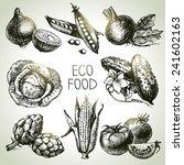 hand drawn sketch vegetable set.... | Shutterstock .eps vector #241602163