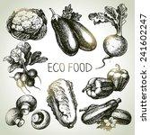 hand drawn sketch vegetable set.... | Shutterstock .eps vector #241602247