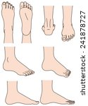 the shape of the foot | Shutterstock .eps vector #241878727