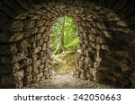 Tunnel Entrance In The Forest