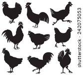 monochrome set of different... | Shutterstock .eps vector #242075053