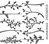 doodle style tree branch... | Shutterstock .eps vector #242230513