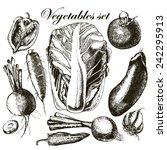 handmade work   set vegetables. ... | Shutterstock .eps vector #242295913