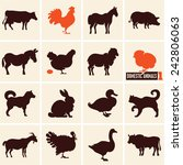 Domestic Animals. Farm Animals...