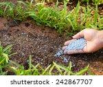 farmer hand giving chemical... | Shutterstock . vector #242867707
